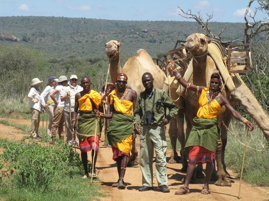 Suyian Soul: Walk with property camels