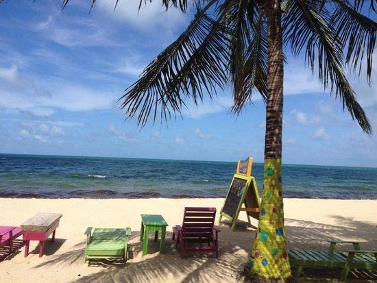 Barefoot Bar: Restaurant beach view