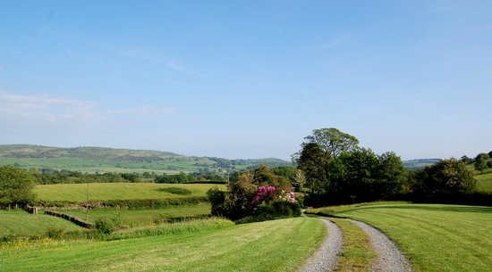 Jammy Patch: The view from Beckside