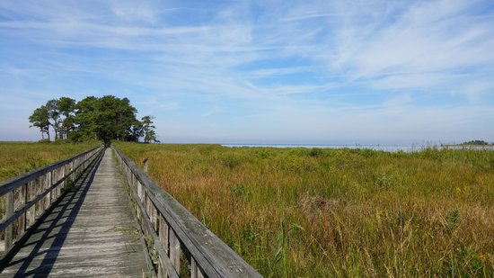 Maryland: Eastern Neck Wildlife Refuge