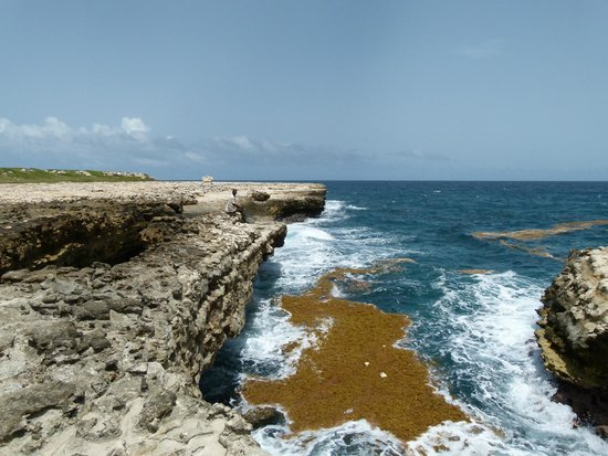 Pelican Safari Tours - Day Tours: Devil's Bridge.