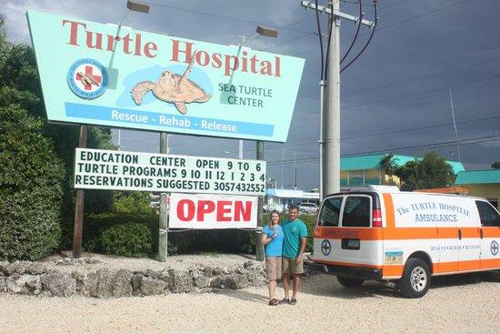 The Turtle Hospital: Turtle Hospital