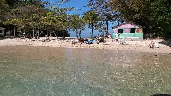 Resultado de imagem para ilha de paqueta