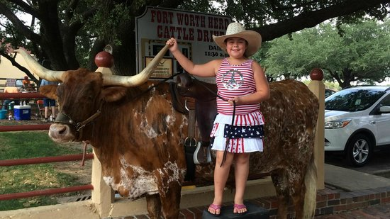 Stockyards Hotel: Longhorn photo opportunity before/after cattle drive.