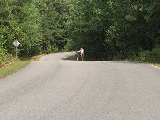 William Bankhead National Forest: Killer hill!!  LOL
