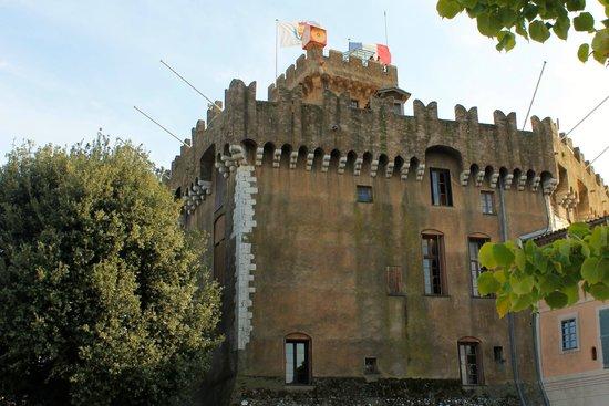 Chateau Grimaldi Musee d'Art Moderne Mediterraneen: Exterior castle view