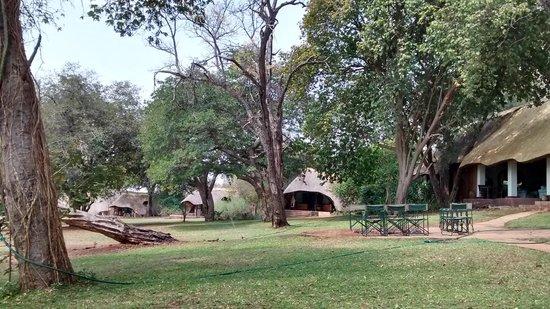 Imbabala Zambezi Safari Lodge : Imbabala