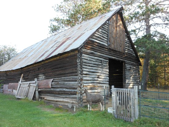 Embarrass, MN: One of original outbuildings houses the Northern Comfort goats