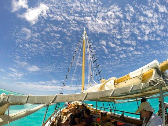 Falla Reef Trips