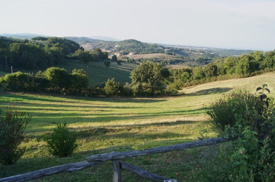 Casa Podere Monti : View from pool area