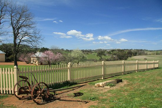 Cooma Cottage: The front yard
