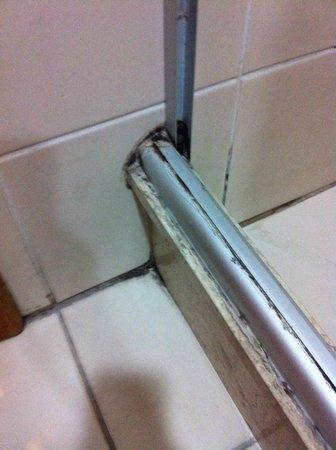 Intercity Jundiai : Mold around shower door