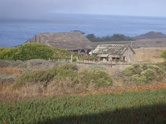 Sea Ranch Lodge: Wedding Barn