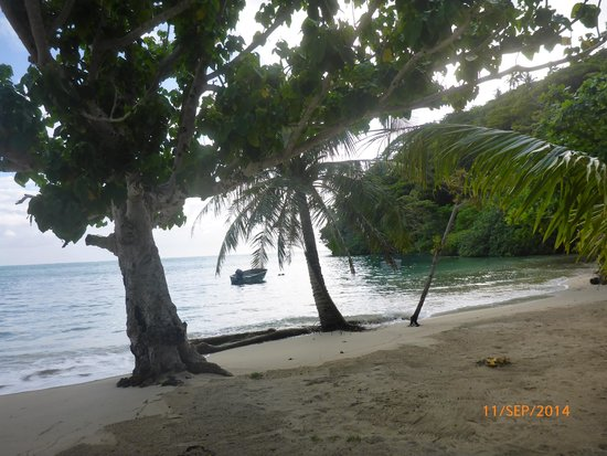 Outdoor Samoa Limited: View from beach fale, Namua Island