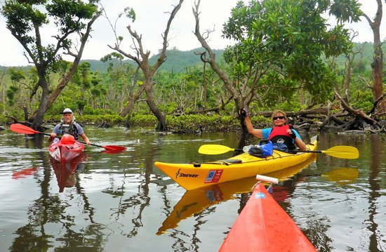 Outdoor Samoa Limited: Peaceful Mangrove forest, Upolu