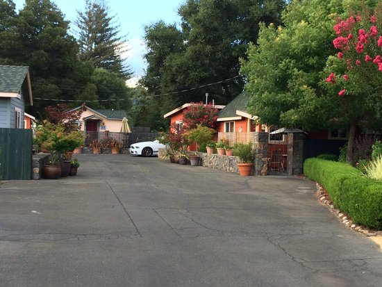 Sonoma's Best Guest Cottages: view of the property