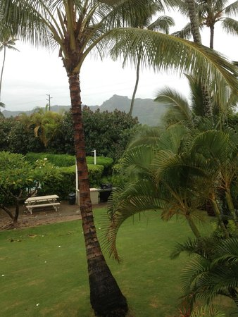 Plantation Hale Suites: View from Balcony. Even pretty on a rainy day!