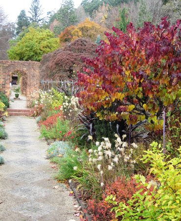 Cloudehill Nursery and Gardens: Cloudehill gardens have a more formal layout
