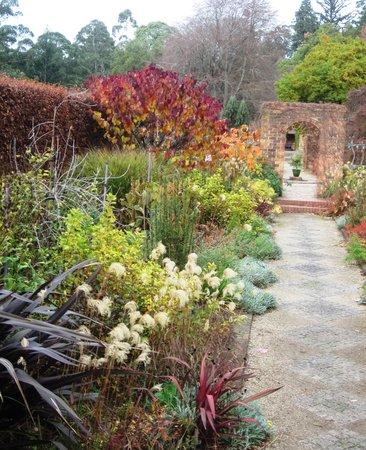 Cloudehill Nursery and Gardens: A lovely autumn vista