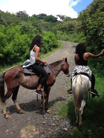 Papagayo Vargas Tours: horse Selfie