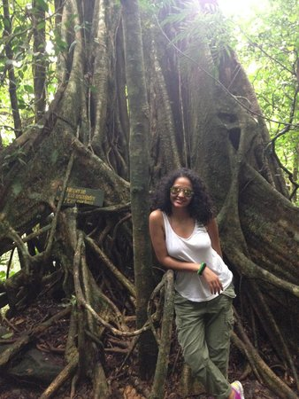 Papagayo Vargas Tours: Gotta love nature!