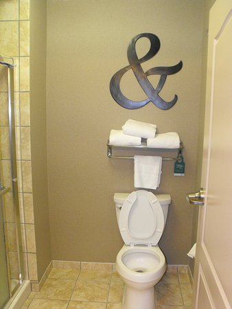 Homewood Suites by Hilton Indianapolis Northwest: bathroom part one