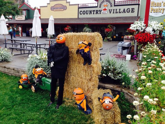 Davison Orchards Country Village: Despicable Me characters! How cute and inventive. I think I'll put Minions in my front yard this