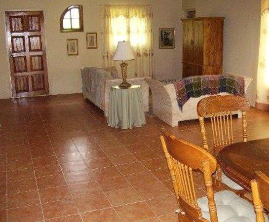 Teresinajamaica: Living room