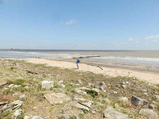 Pegasus Hotel Guyana: Beach