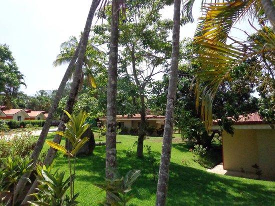 Province of Alajuela, كوستاريكا: Norma's Villas 2014