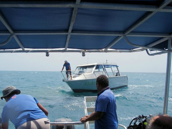 Dive Wananavu : The dive boats