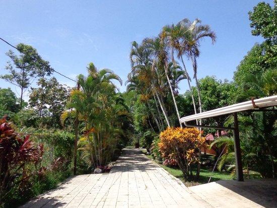 Provincia di Alajuela, Costa Rica: Entrance at Norma's Villas #costarica