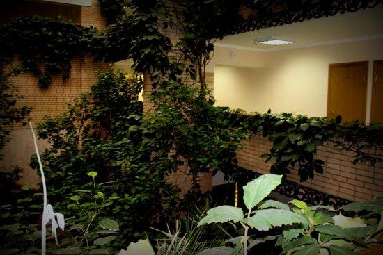 Park Hotel Veles: Зимний сад отеля - на 3 этажа!