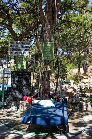 Pine Tree: le coin repos