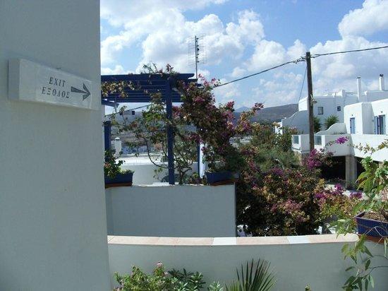 "View from Terasse of ""Villa Galini "",Paros"
