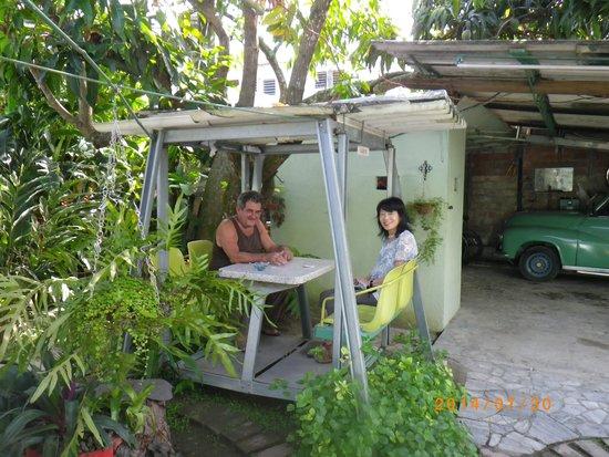"""Aparthotel """"Hostel-Simon"""": Inner garden"""