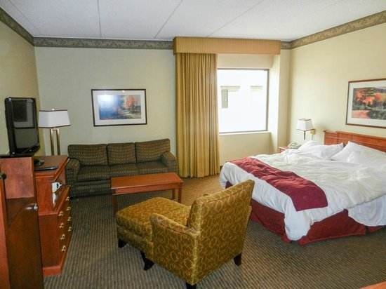 Radisson Paper Valley Hotel: room 1