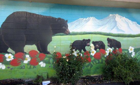 Black Bear Diner - Mt. Shasta, Ca