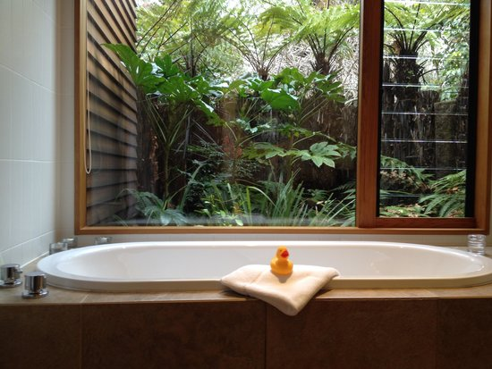 River Birches Lodge: Bath with a view!