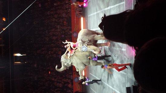 BOK Center: Circus