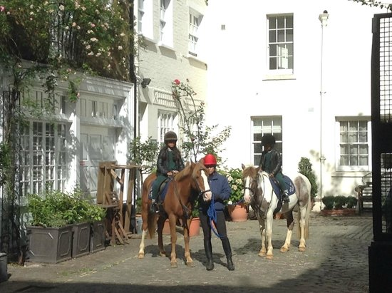 Hyde Park Stables : Mounting up in the yard (the Mews)
