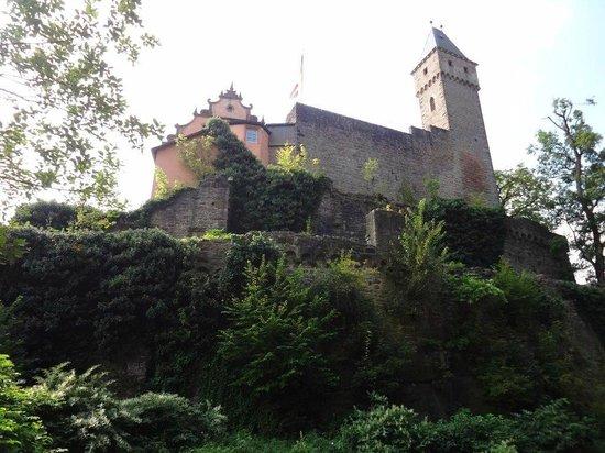 Hirschhorn (Neckar)照片