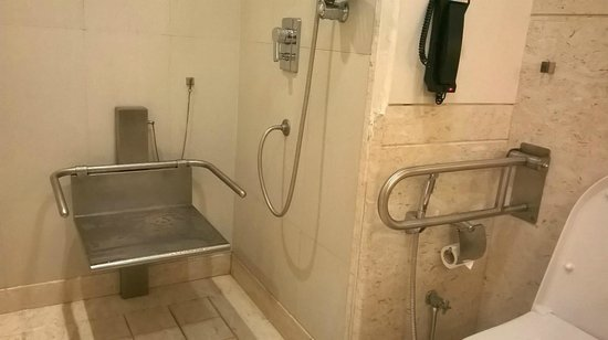 Radisson Hyderabad Hitec City: Loo for Disabled?