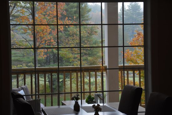 506 On The River Inn : Foliage view from dining area