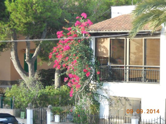Apartamentos Es Salobrar: Blick vom Balkon