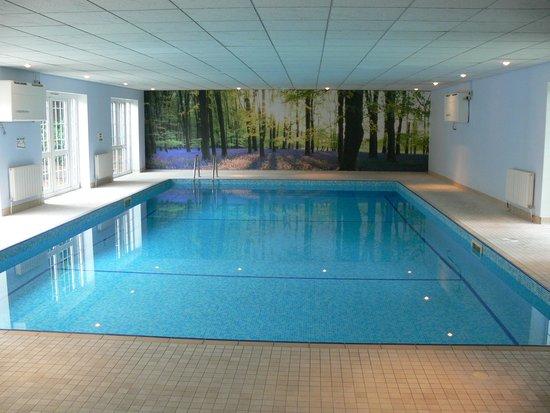 forest lodge indoor pool picture of forest lodge hotel. Black Bedroom Furniture Sets. Home Design Ideas