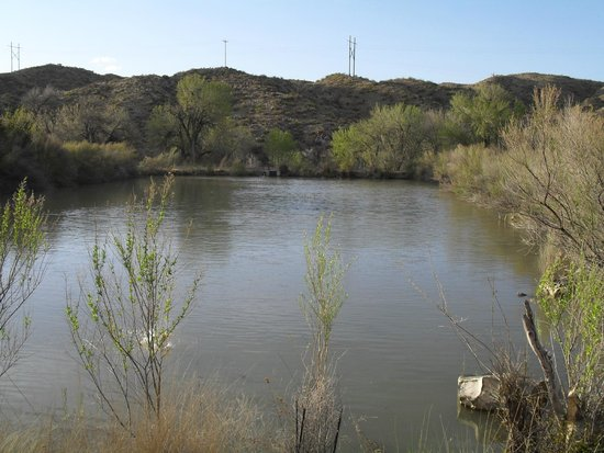 Elephant Butte Lake State Park: Pond from the days of the fish hatchery