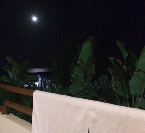 Aquarius: a night view from the balcony