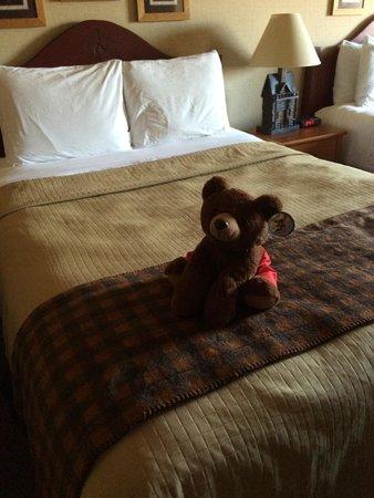 Stoney Creek Hotel & Conference Center - La Crosse : Bedtime friends