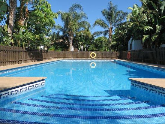 Hacienda Roche Viejo: Pool area in the garden